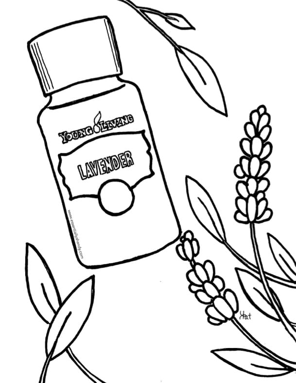 coloring pages of lavender - photo#30
