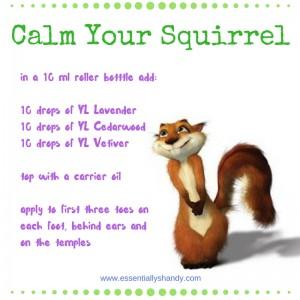 Calm Your Squirrel